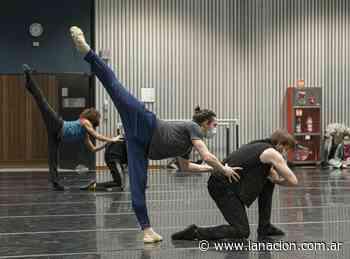 El Teatro Colón reprogramó para septiembre sus funciones de ballet por un caso de covid-19 - LA NACION
