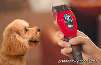 Dogcare smart home pet clipper makes easy work of do grooming