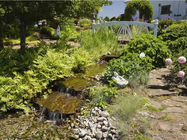 A living work of art: Creating a thematic garden in your backyard