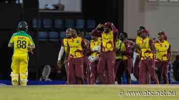 ODI live: Australia's series against West Indies resumes in Caribbean