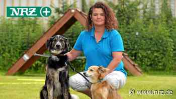 Neue Hundeschule in Rees an der Hermanns Mühle in Esserden - NRZ