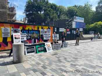 Activist group protest Brighton uni animal vivisection