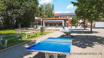 Schulen in Nagold - OHG und Zellerschule fordern Ausbau des gemeinsamen Pausenhofs - Schwarzwälder Bote