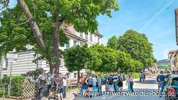 Abitur am OHG Nagold - Mehr als ein Drittel schafft die Eins vor dem Komma - Schwarzwälder Bote