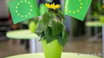 Grüne im Kreis Warendorf legen alle Spenden offen - Freude in Drensteinfurt - Westfälischer Anzeiger