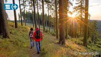 Kreis Olpe: 1,7 Millionen Wanderer auf dem Rothaarsteig - WP News