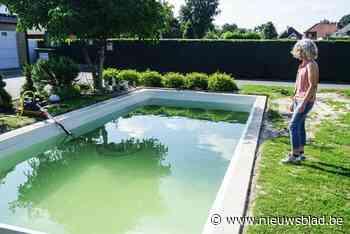 Voorschot betaald, maar nooit een zwembad gezien: tientallen klanten van Whoppa Pool zijn opgelicht - Het Nieuwsblad