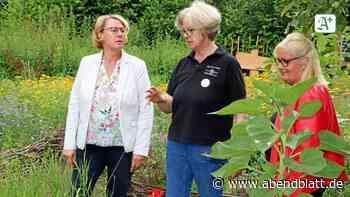 Warum eine Ministerin Doras Garten in Seevetal besucht - Hamburger Abendblatt