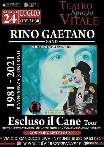 Domani sera a Nettuno la Rino Gaetano Band al Teatro Spazio Vitale - Il Clandestino Giornale