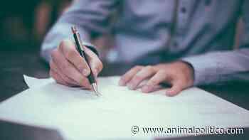 Aprender inglés sin escuchar: Universitario denuncia discriminación - Animal Político