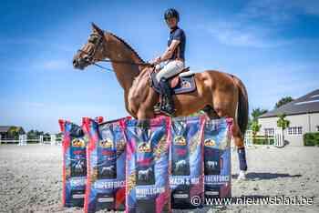"""Olympische paarden springen in Tokio op Gents paardenvoer: """"Sommige paarden krijgen een 'gelleke' zoals de coureurs"""" - Het Nieuwsblad"""