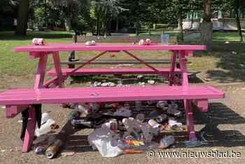 Dagelijkse kost: parken in Gent kreunen ook deze zomer onder het afval - Het Nieuwsblad