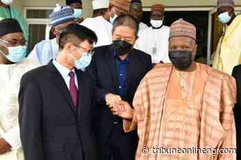 Gombe gov parleys Madugu cement factory, Chinese conglomerate to establish cement plant - NIGERIAN TRIBUNE