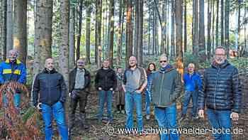 Wildberg - Gemeinderat will Stadtforst umbauen - Schwarzwälder Bote