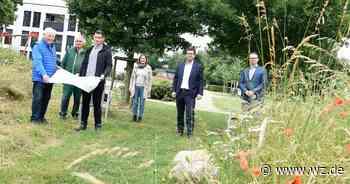 Mehr Fläche für den Generationenspielplatz in Nettetal-Breyell - Westdeutsche Zeitung