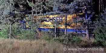 Unfall auf A 9: Sattelzug kommt bei Beelitz von der Fahrbahn ab und landet im Wald - Märkische Allgemeine Zeitung
