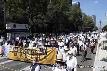 Marchan al Zócalo por desabasto de oncológicos – La Prensa de Monclova - La Prensa De Monclova