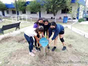 Jóvenes reforestan Cedif Sur en Monclova - Vanguardia MX