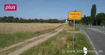 Dieburg Dieburg wächst am Messeler Weg - Echo Online