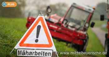 Straßenränder als Lebensraum? - Region Kelheim - Nachrichten - Mittelbayerische