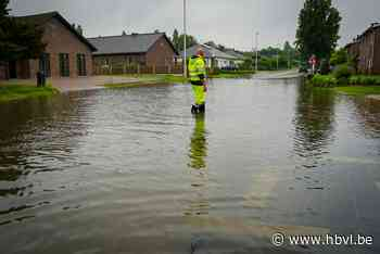 """Ook in Hulst wateroverlast: """"Toiletwater spuit alle kanten uit"""" - Het Belang van Limburg"""