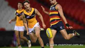 Crows clip Hawks' wings in 19-point win - Tasmania Examiner