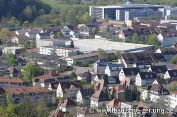 Waldkircher übergeben 1400 Unterschriften für Bürgerbegehren zum Gewerbegebiet Inried - Waldkirch - Badische Zeitung