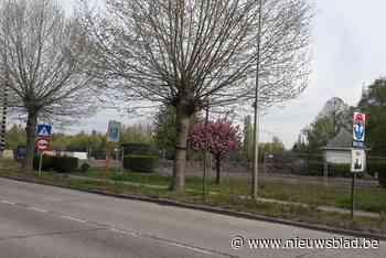 Niel lanceert wedstrijd voor ontwikkeling Parkwijk - Het Nieuwsblad