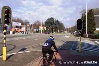 Heraanleg fietspad Mechelsesteenweg verschuift naar volgend ... (Hove) - Het Nieuwsblad
