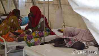 Cholera kills four in Yobe, two hospitalised   The Guardian Nigeria News - Nigeria and World News — Nigeria — The Guardian Nigeria News – Nigeria and World News - Guardian