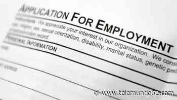 Aumentan las dificultades para reclamar desempleo - Telemundo 62