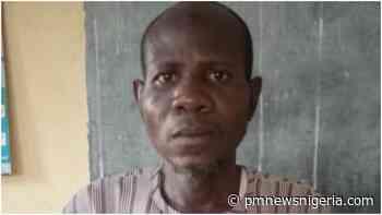 Adamawa man Usman beats wife to death over N1000 - P.M. News