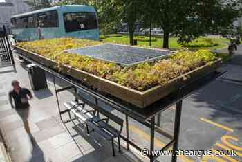 Brighton's first plant-topped bus shelter launched