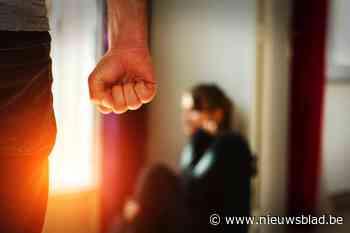 Vijf maanden zwangere vrouw raakt gewond bij partnergeweld - Het Nieuwsblad
