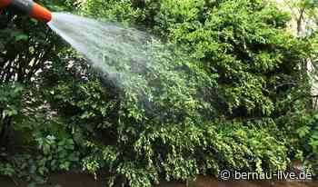 17-21 Uhr: Garten-Sprengverbote für den Raum Wandlitz | Bernau LIVE - Dein Stadt- und Regionalportal für Bernau - Bernau LIVE