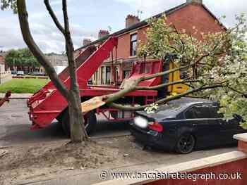 VIDEO: Skip truck clips tree causing large branch to fall on to BMW