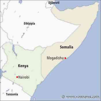Secretary Austin: US Strikes in Somalia Result of Mogadishu's 'Increased Op Tempo' Against al-Shabab - VOA Asia