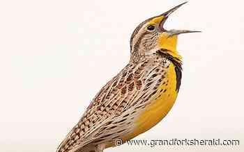 Conservation groups praise Recovering America's Wildlife Act legislation - Grand Forks Herald