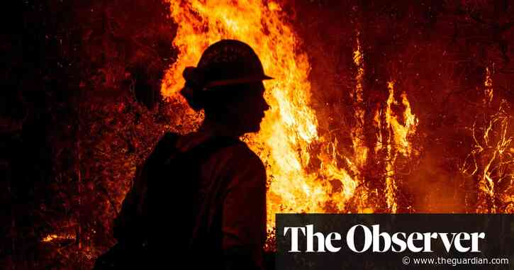 Plans of four G20 states are threat to global climate pledge, warn scientists