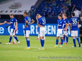 2. Liga: Schalke verliert, gewinnt aber Fans zurück - Bietigheim-Bissingen - Bietigheimer Zeitung