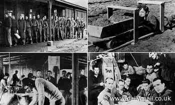 Nazis knew about Great Escape: Files show Germans 'let plan go ahead so they could punish escapees'