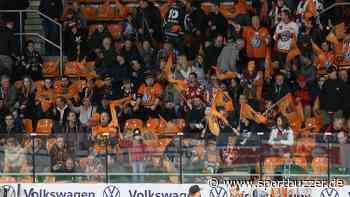 Maximal 1300: So planen die Grizzlys Wolfsburg für die erste Fan-Rückkehr - Sportbuzzer