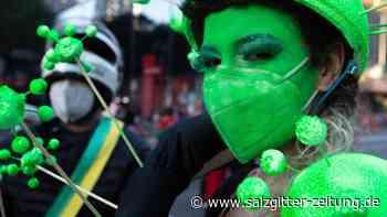 Brasilianer gehen gegen Bolsonaro auf die Straße - Salzgitter Zeitung