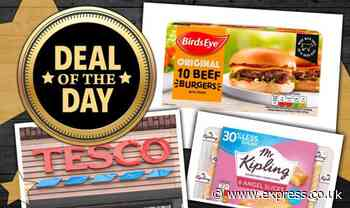 DEAL OF THE DAY: Tesco shoppers can get deals on BBQ food, dessert, ice cream and more - Express