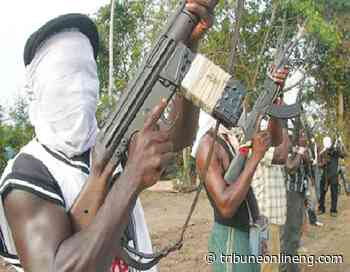 Abductors of Pharmacist in Kogi reject N10 million ransom, demand N30m - NIGERIAN TRIBUNE