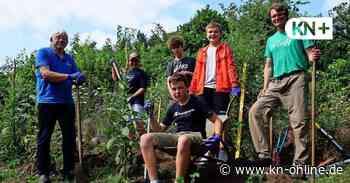Konfirmanden aus Kaltenkirchen arbeiten im Schmetterlingsgarten des Nabu - Kieler Nachrichten