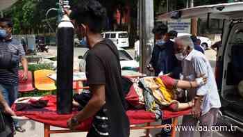 Dengue, el nuevo desafío que enfrenta Bangladés además del coronavirus - Anadolu Agency
