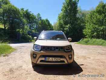 Fahrbericht Suzuki Ignis: City-Car und SUV - Test-Bericht - Auto-Presse.de