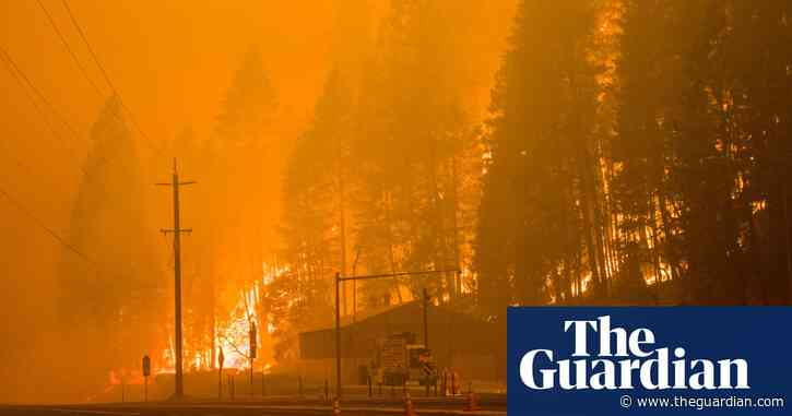 Climate crisis 'a hammer hitting us in the head', says Oregon governor as wildfires rage