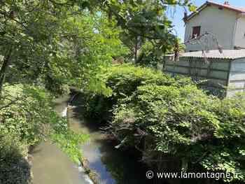 À Chappes (Puy-de-Dôme), de futurs travaux vont être menés sur la rivière Bédat pour l'extraire de son lit de béton - Chappes (63720) - La Montagne